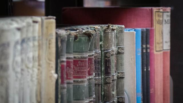 Bibliographie * Genre